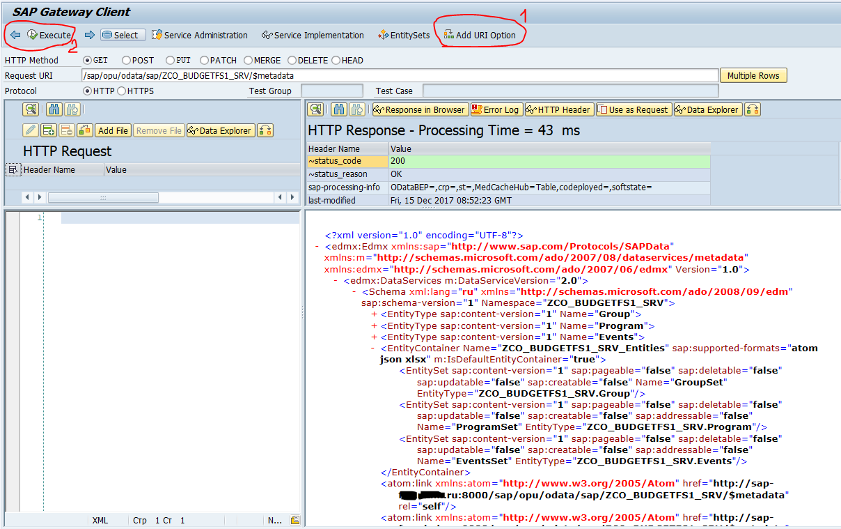 SAP Gateway Client